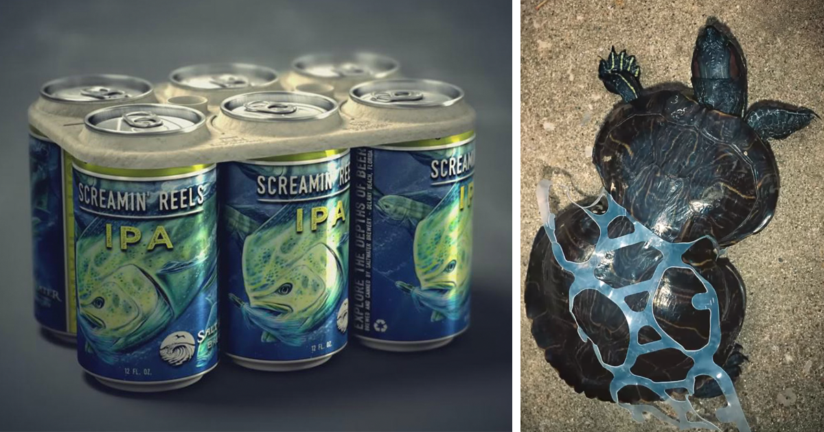 anillas-latas-cerveza-biodegradables-comestibles-saltwater-brewery-fb